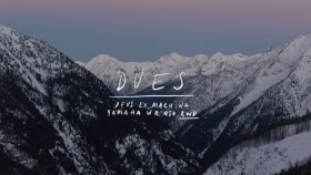 Dues